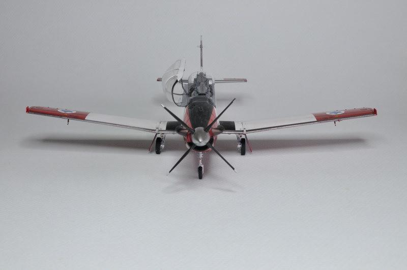 T-6A Texan II Patrouille Acrobatique de l'IAF [Ibex] _DSC9746