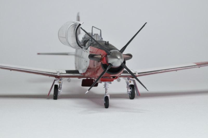 T-6A Texan II Patrouille Acrobatique de l'IAF [Ibex] _DSC9753